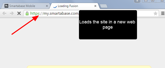 The site loads in a separate page