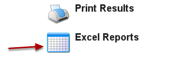 Click on Excel Report