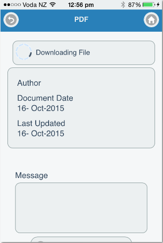 An example of opening a pdf