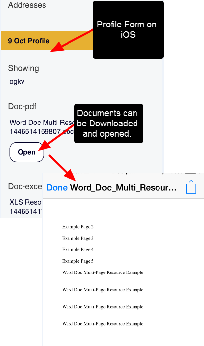 Example of the Profile Form on iOS, and opening the File directly from the Profile Module