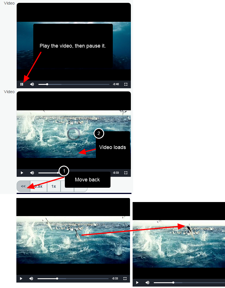 For Frame by Frame, click play on the video and then pause it. Use the forward >> or backward << buttons to step through. Note that loading speed can influence the step through process