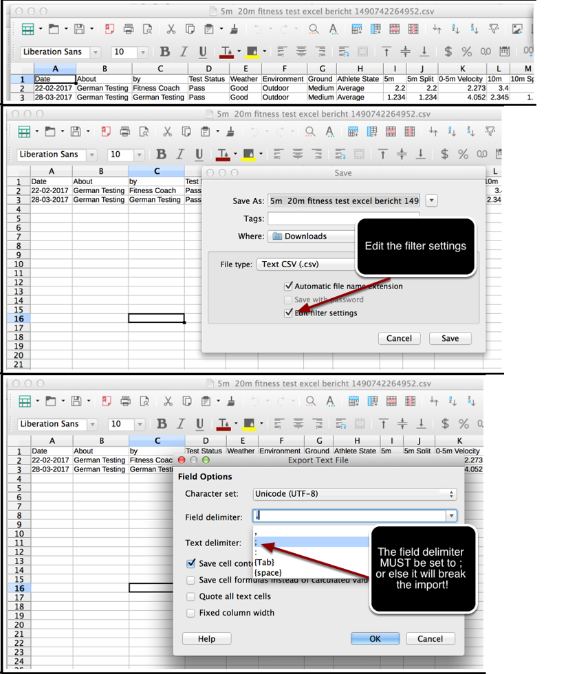 WARNING: IF YOU EDIT IN EXCEL, YOU MUST SAVE THE FILE WITH A SEMICOLON AS THE FIELD DELIMITER