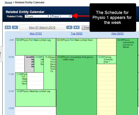 Select a specific Related Entity Type. The Calendar will display all of the booked, rescheduled and cancelled entries for that chosen related entity