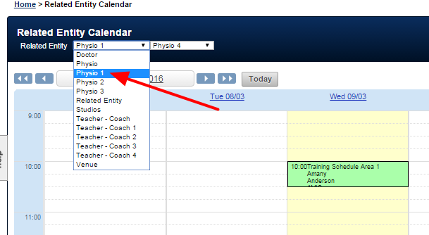 Unfortunately, if a user selected to view entries for the alternate names (e.g. Physio 1, Physio 2 or Physio 3), when they went to book in new entries and they had the calendar of the Physio 1 open, they can ONLY select forms that have that specific RE field name in them