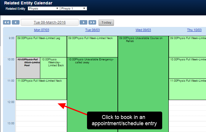 To book in a new Appointment or Entry, click on the appropriate time in the Calendar