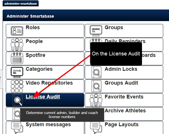 Click on the License Audit button