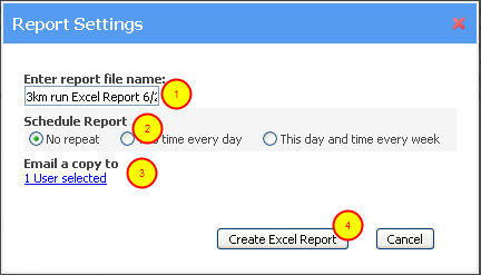 Complete the Report Name, E-mail it, or Run the Report