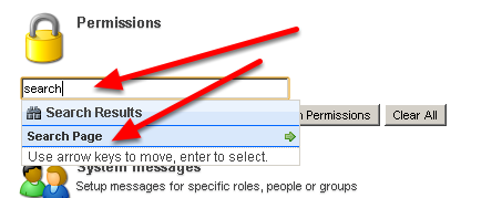 "1.2 Type in ""Search"" into the Permissions text field and click on ""Search Page"" then click ""Add Permission"""