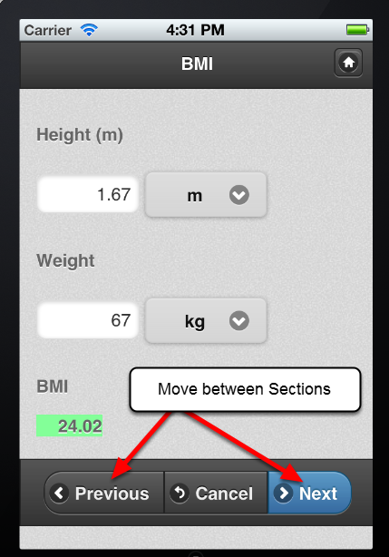 "Once you complete all of the fields in a Section, click ""Next"" to move to the next Section's fields. You can click on ""Previous"" to go back to the previous Section."
