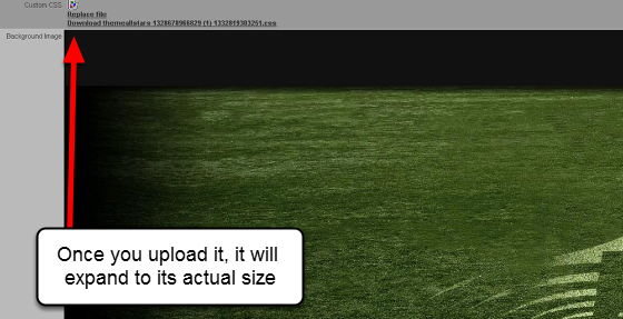 You can upload your own background image to appear with this Page Layout. The background image will need to be large enough to cover the entire Site so it you have an image, ensure you enlarge it correctly. It should be about 2000 x 865 pixels