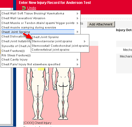 When a user selected an Orchard Code Injury Category on the Body Diagram, often the sub category levels were hard to select as the selection would move to the next category, not the subcategory