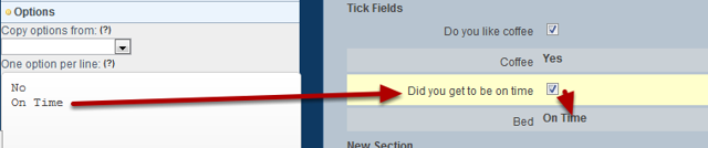 You can add in any type of options you require as long as you understand that the first option will display when it is unticked and the second when it is ticked