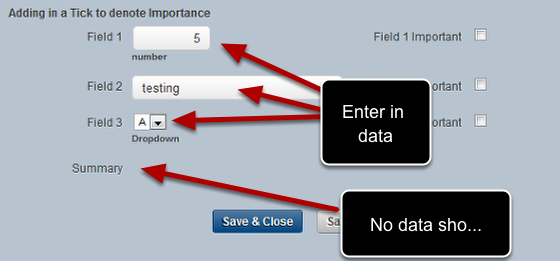Now Save the Form, Open it, then Preview it and it will be in a 2 column layout. Enter in some data into the fields