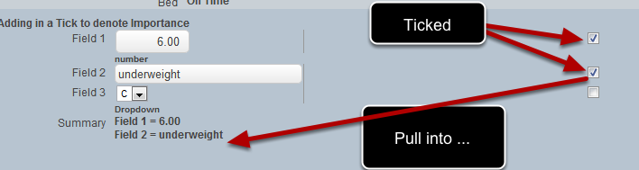 To set up a field to pull though into the important summary field you can include the field and then add in a tick box to enable it to pull though.