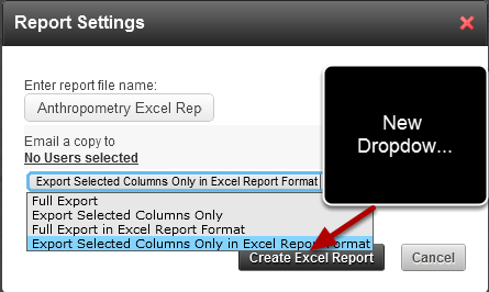 """Click on Excel (top right) and then select """"Export in Excel Report Format"""" the Data in the same format as the Excel Report that you are going to update"""
