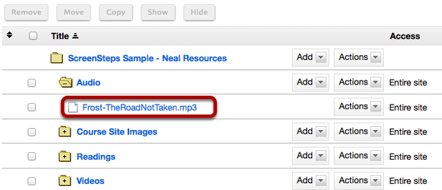 Upload the mp3 file to Resources.
