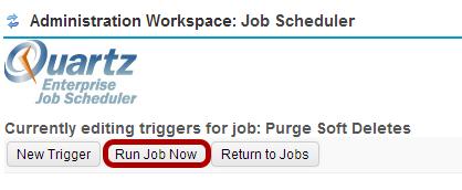Click Run Job Now.