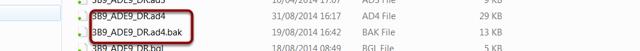 Local backup file