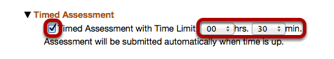 Timed Assessment Section: