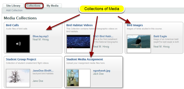 Example: Collections
