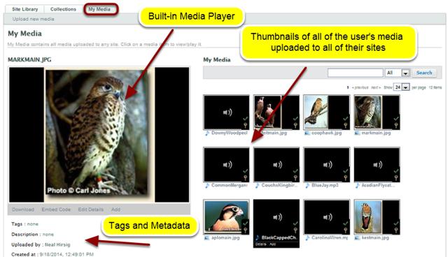 Example: My Media