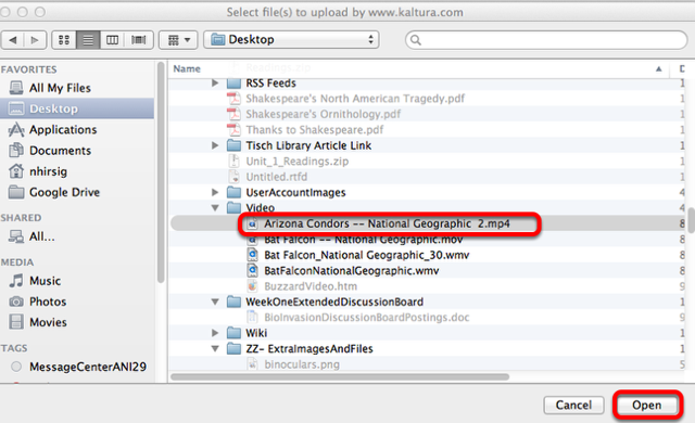 Locate and select the video file on your computer, then click Open (or Select)