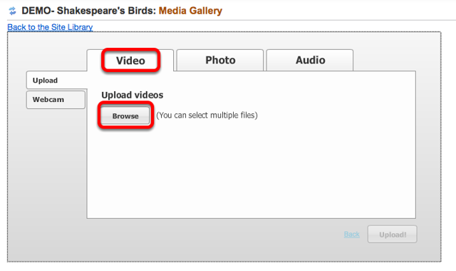 Click Video tab, then Browse.