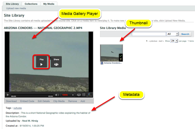 To play the video, click the thumbnail of the video on the right, then click Play in the Media Gallery Player.