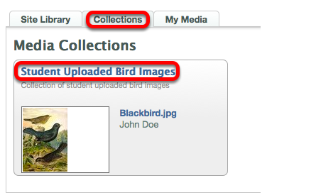 Click on the Collection tab, then the name of the Collection.