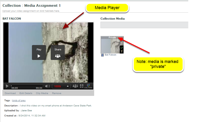 Example: Student Uploaded media in a Collection collaboration space (group media space)