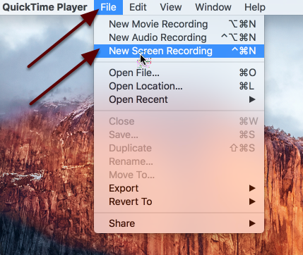 Click File / New Screen Recording